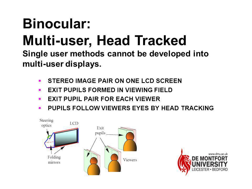 Multi-user, Head Tracked