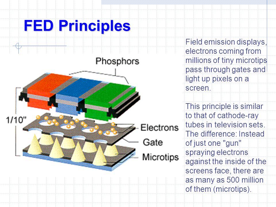 FED Principles