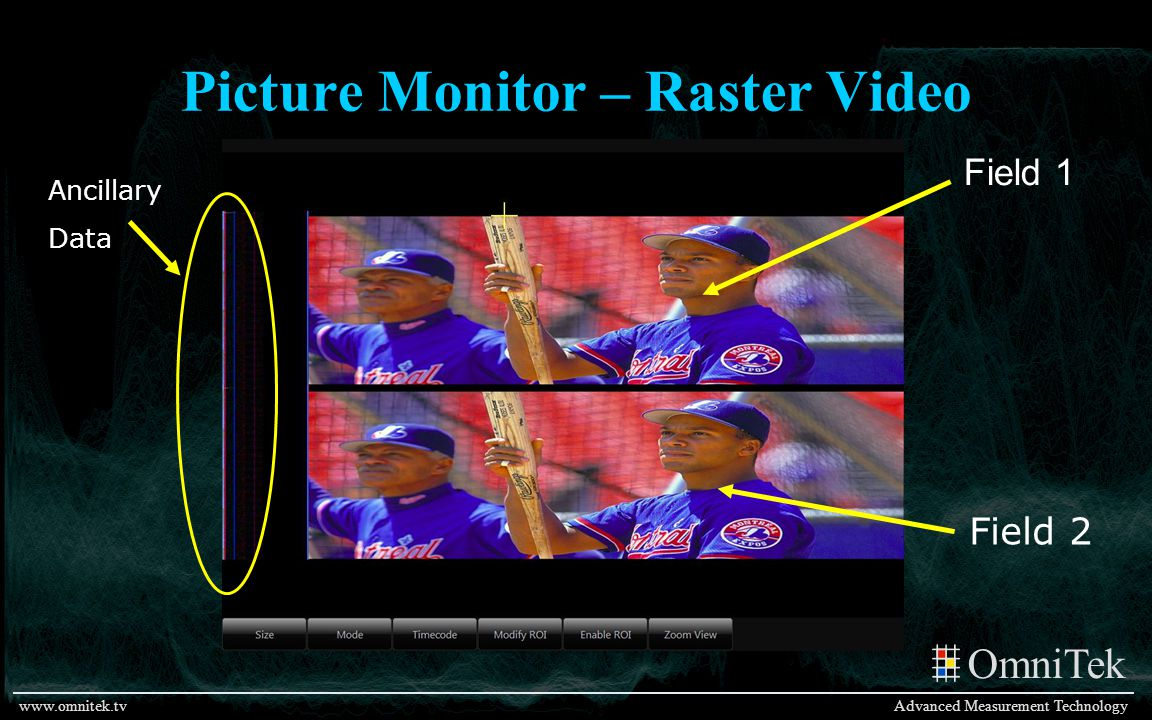 Picture Monitor – Raster Video