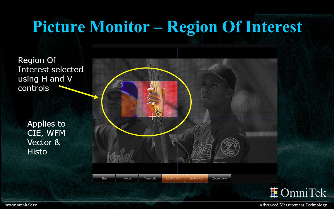 Picture Monitor – Region Of Interest