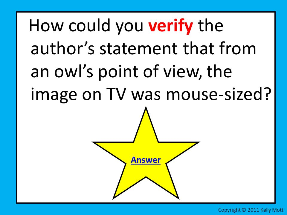 How could you verify the author's statement that from an owl's point of view, the image on TV was mouse-sized