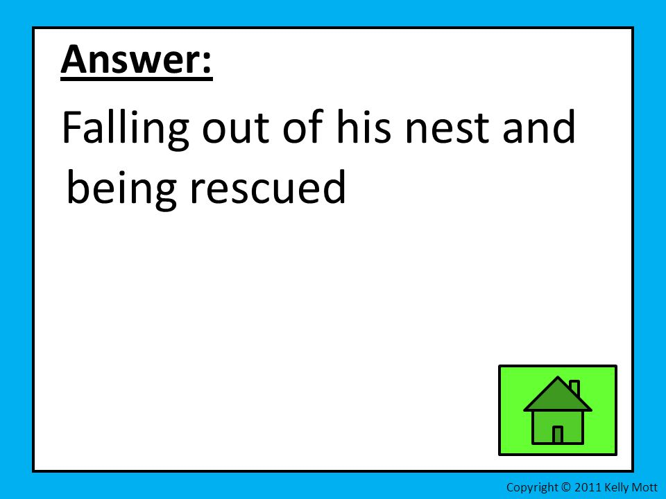 Answer: Falling out of his nest and being rescued