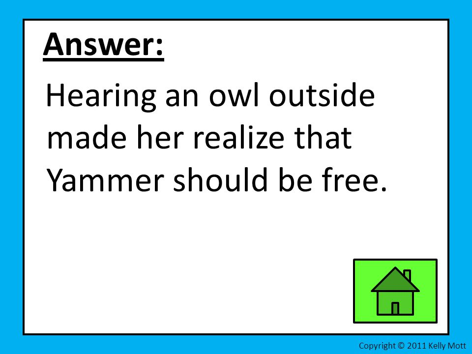 Hearing an owl outside made her realize that Yammer should be free.
