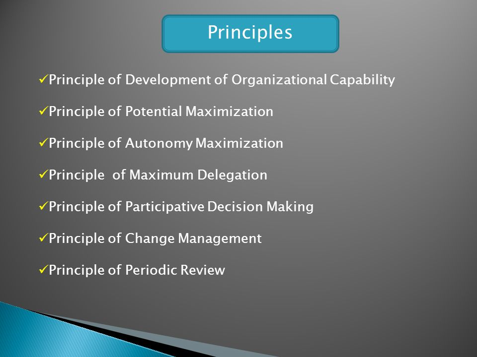 Principles Principle of Development of Organizational Capability