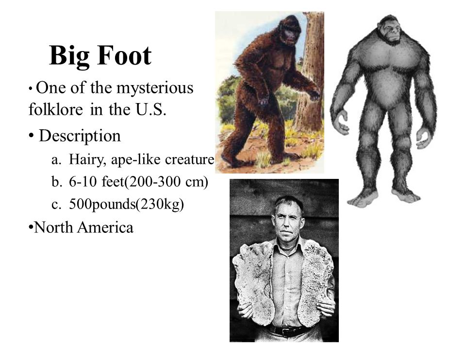 Big Foot Description North America Hairy, ape-like creature