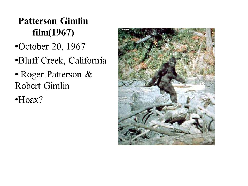 Patterson Gimlin film(1967)