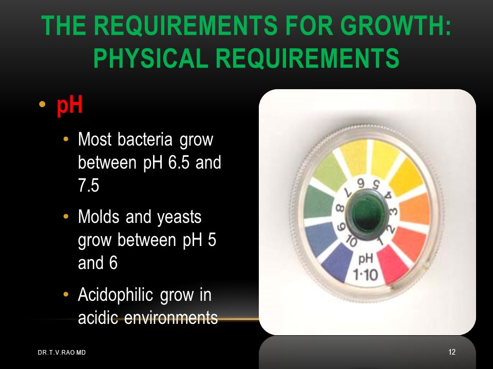 The Requirements for Growth: Physical Requirements