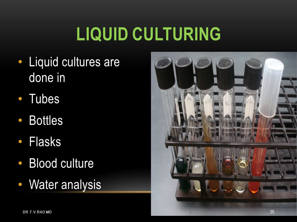 Liquid culturing Liquid cultures are done in Tubes Bottles Flasks