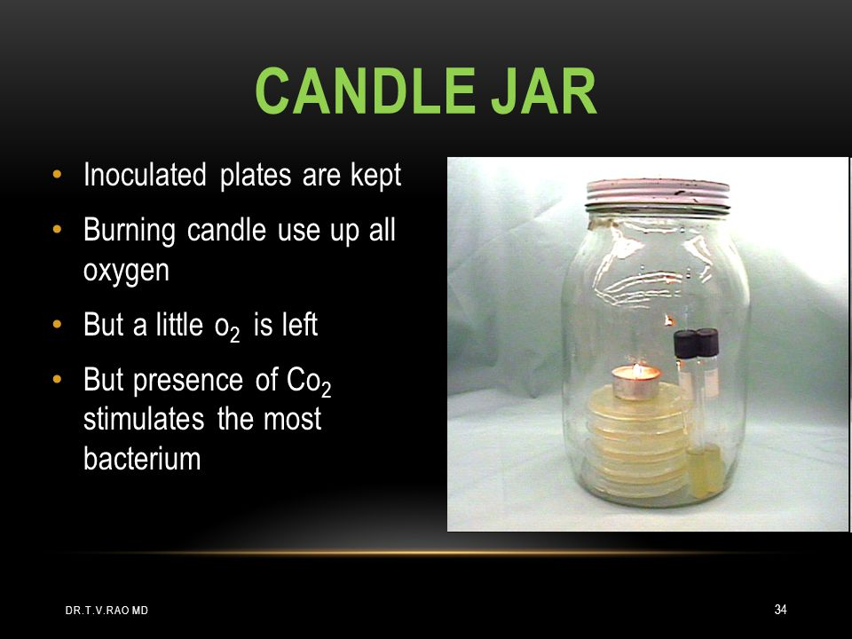 Candle Jar Inoculated plates are kept Burning candle use up all oxygen