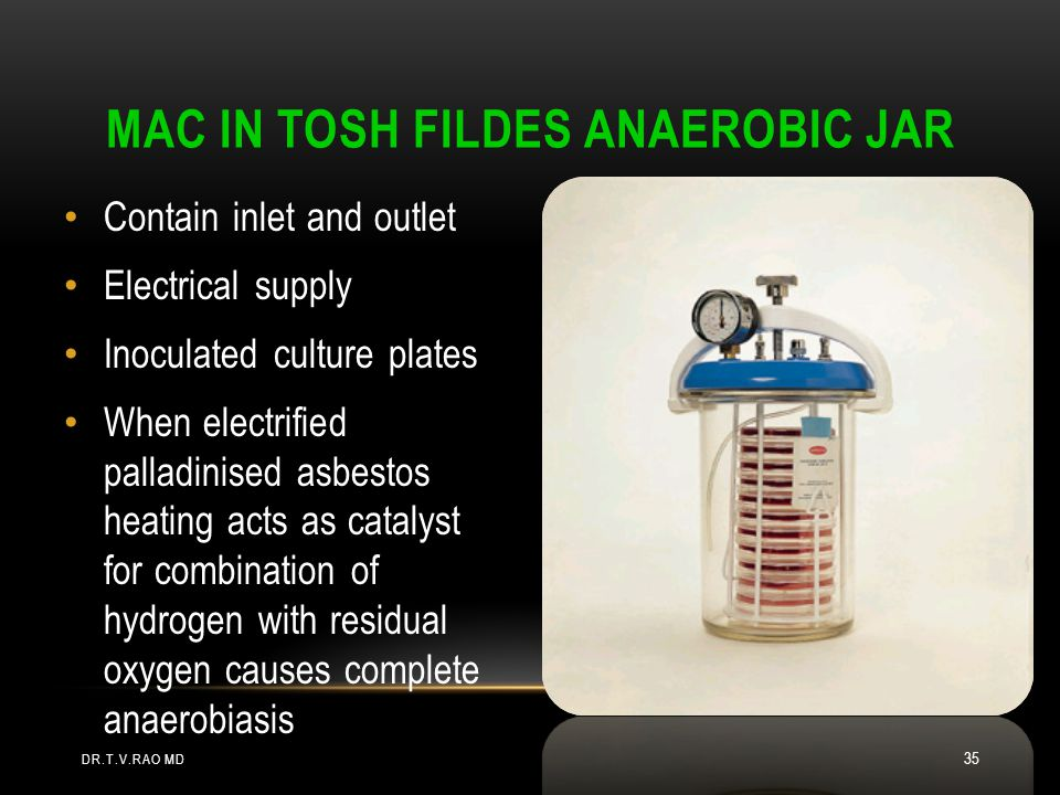 Mac In tosh Fildes Anaerobic Jar