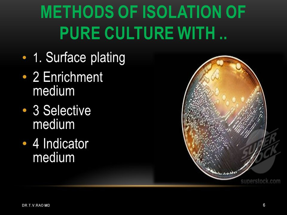 Methods of isolation of pure culture with ..