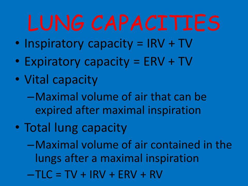 LUNG CAPACITIES Inspiratory capacity = IRV + TV
