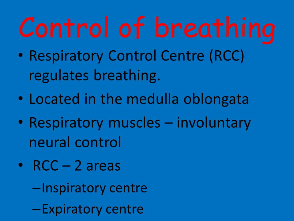 Control of breathing Respiratory Control Centre (RCC) regulates breathing. Located in the medulla oblongata.