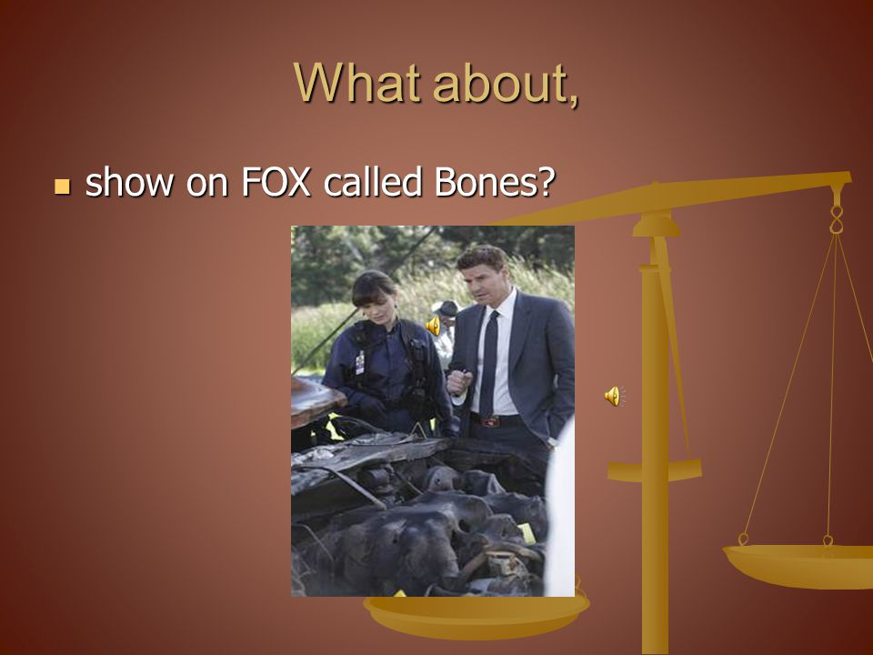 What about, show on FOX called Bones