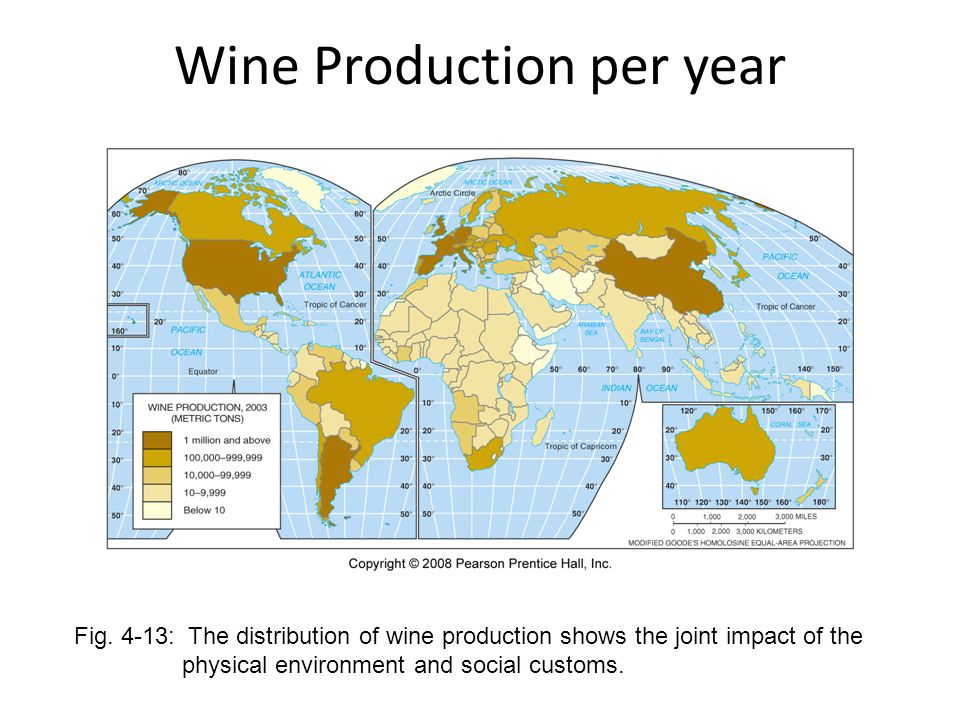 Wine Production per year