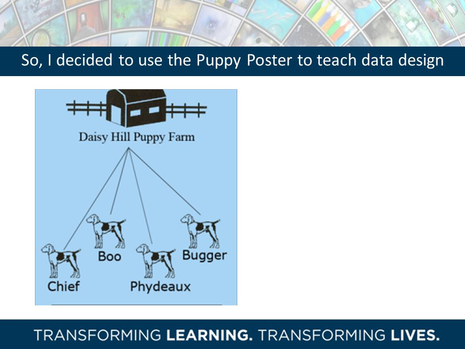 So, I decided to use the Puppy Poster to teach data design