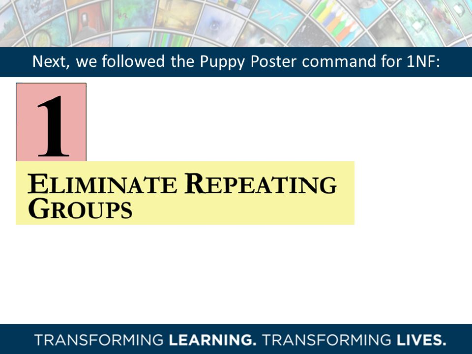 Next, we followed the Puppy Poster command for 1NF: