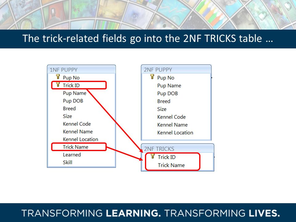 The trick-related fields go into the 2NF TRICKS table …