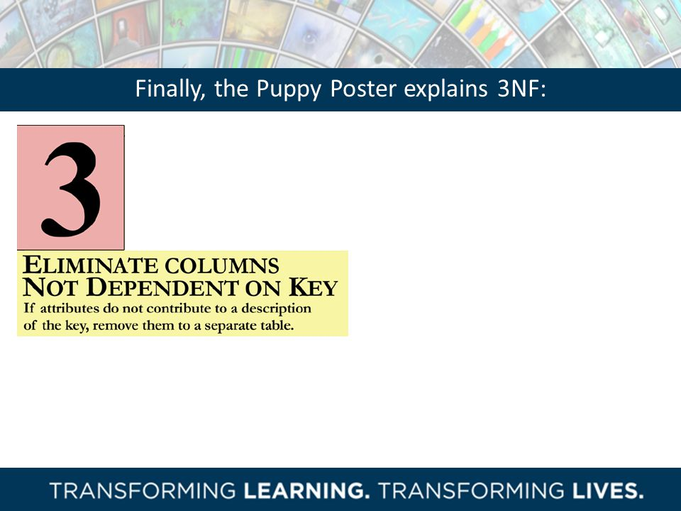 Finally, the Puppy Poster explains 3NF: