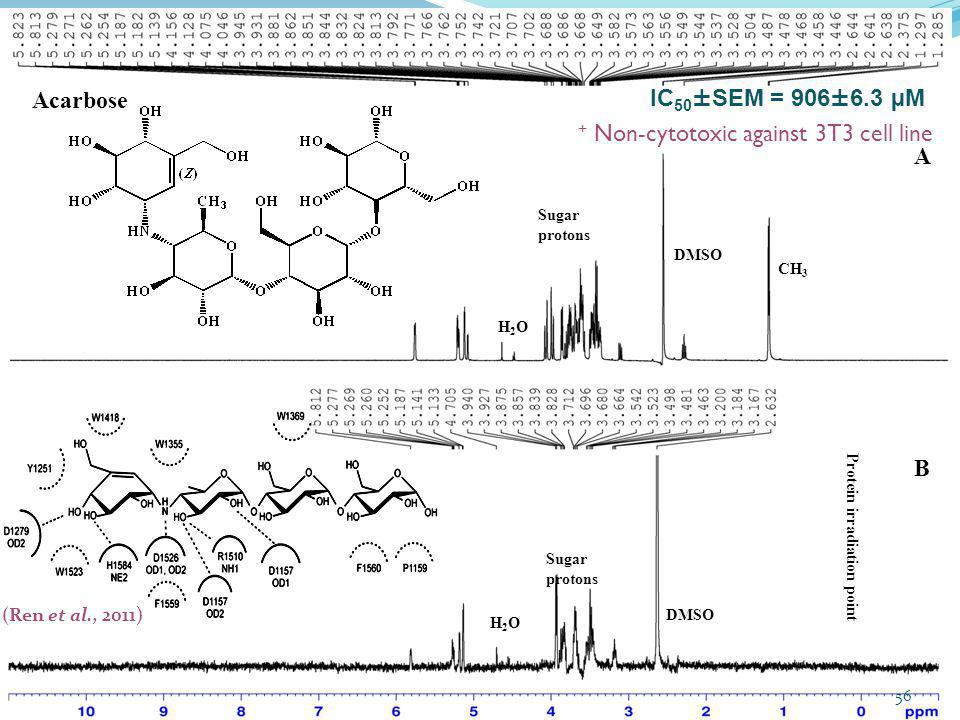 + Non-cytotoxic against 3T3 cell line A