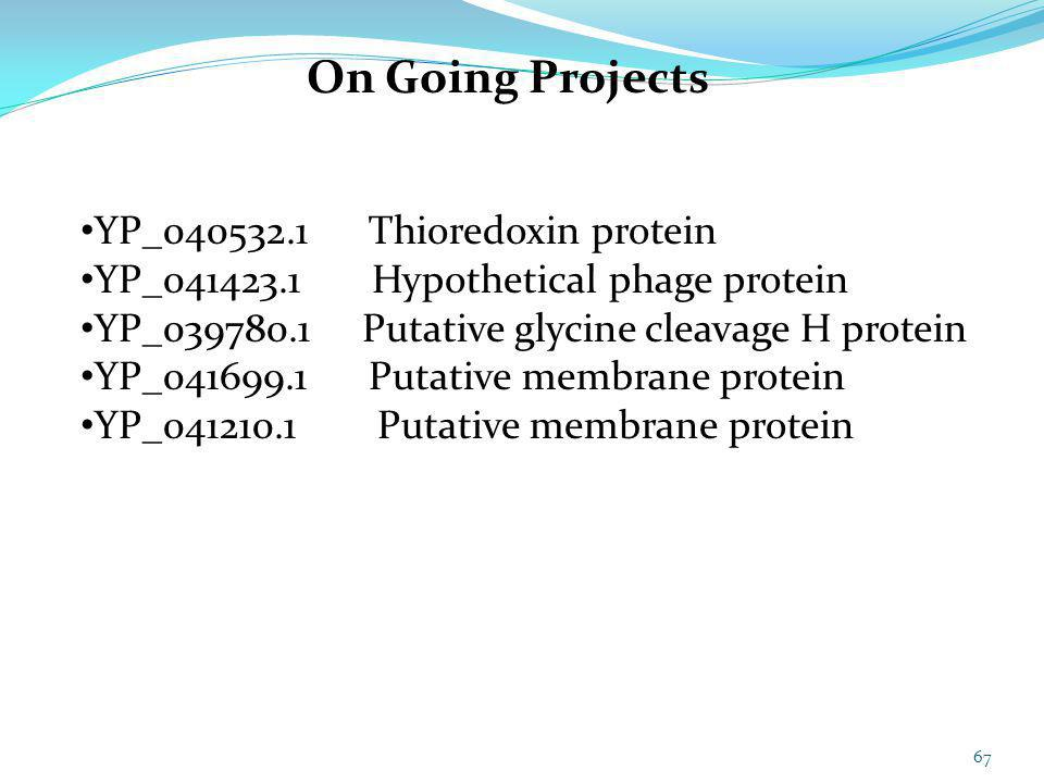 On Going Projects YP_040532.1 Thioredoxin protein