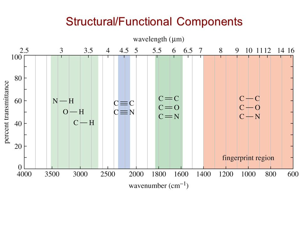 Structural/Functional Components
