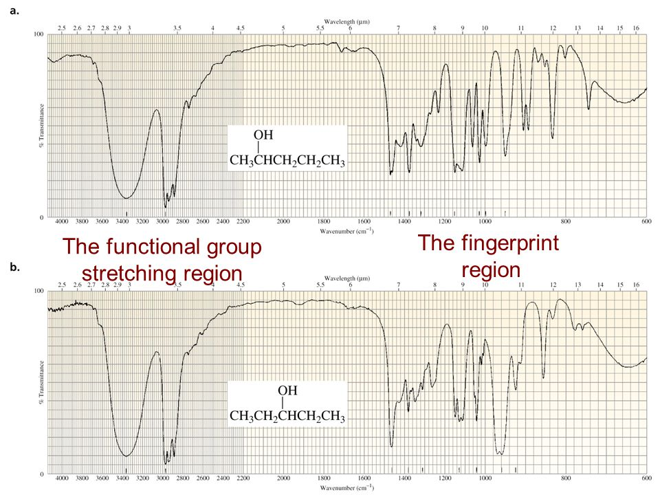 The functional group stretching region The fingerprint region