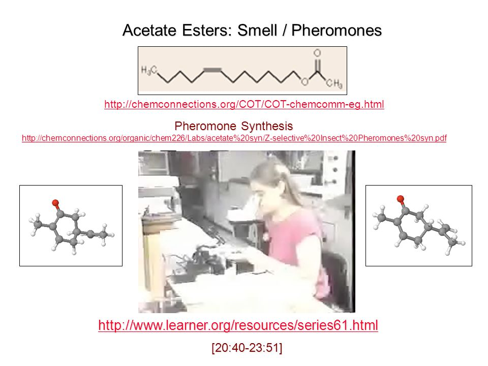 Acetate Esters: Smell / Pheromones