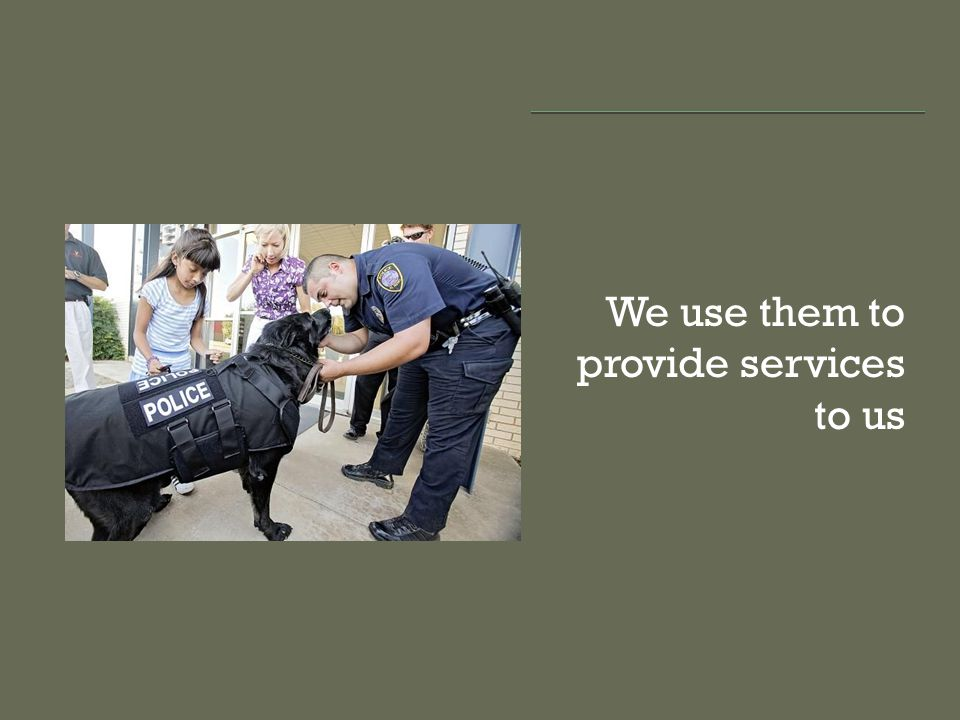 We use them to provide services to us