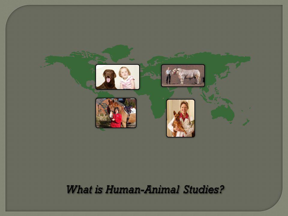 What is Human-Animal Studies