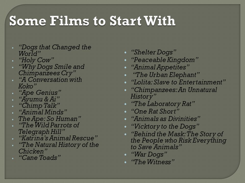 Some Films to Start With