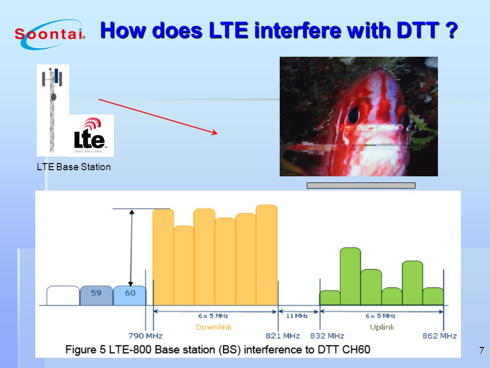 LTE-800 Transmission Interferance into DTT