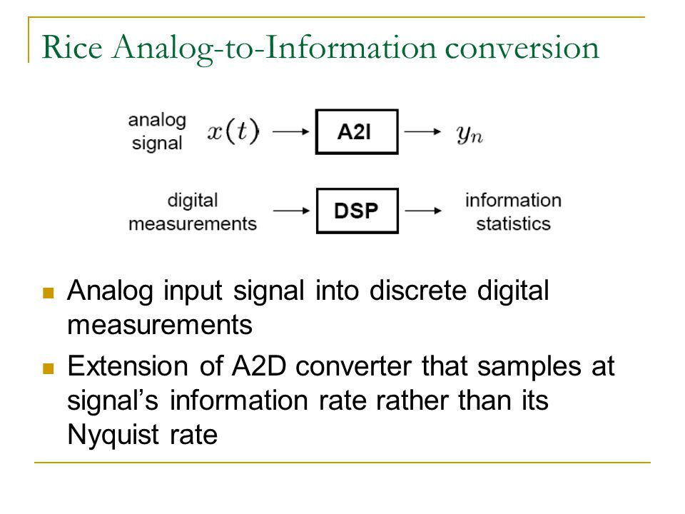 Rice Analog-to-Information conversion