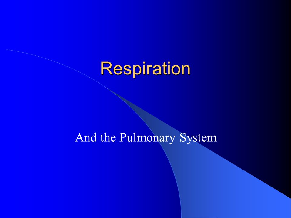 And the Pulmonary System