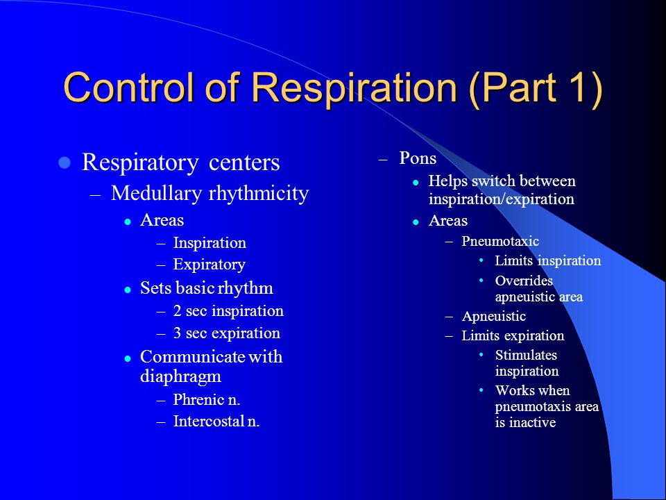 Control of Respiration (Part 1)