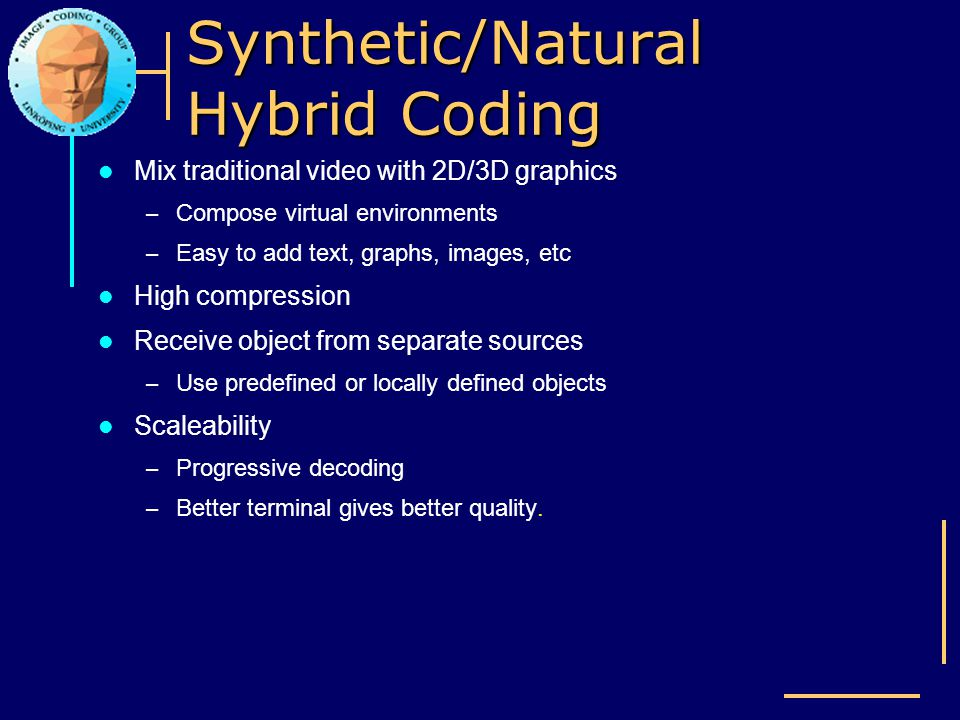Synthetic/Natural Hybrid Coding