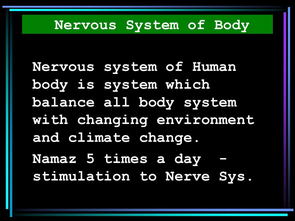 Nervous System of Body Nervous system of Human body is system which balance all body system with changing environment and climate change.