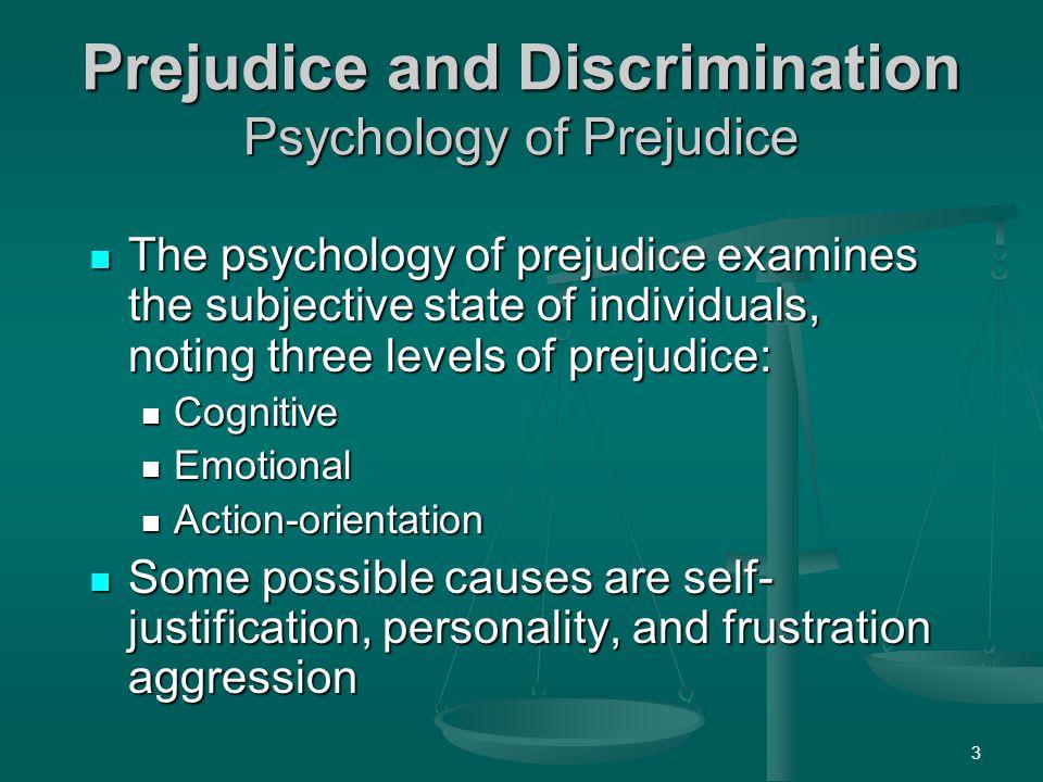 Prejudice and Discrimination Psychology of Prejudice