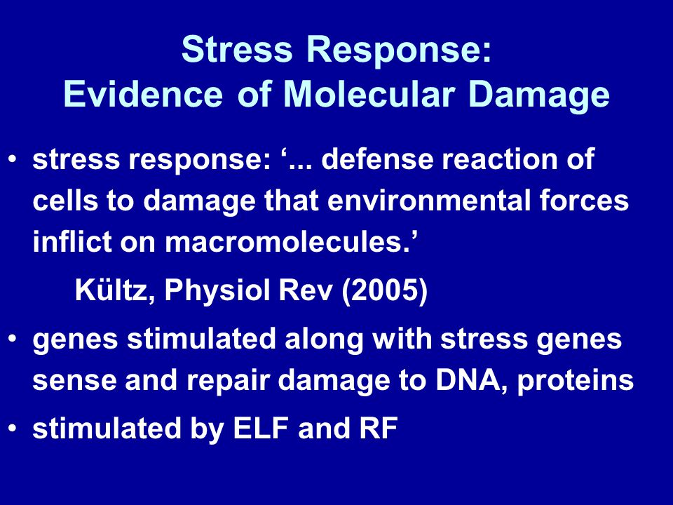 Stress Response: Evidence of Molecular Damage