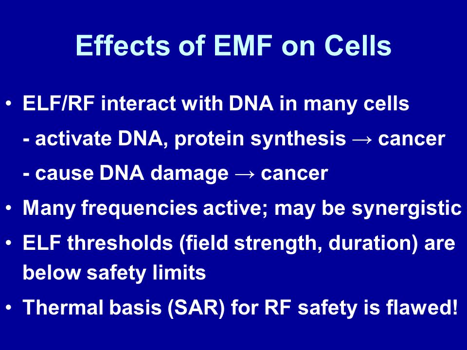 Effects of EMF on Cells ELF/RF interact with DNA in many cells