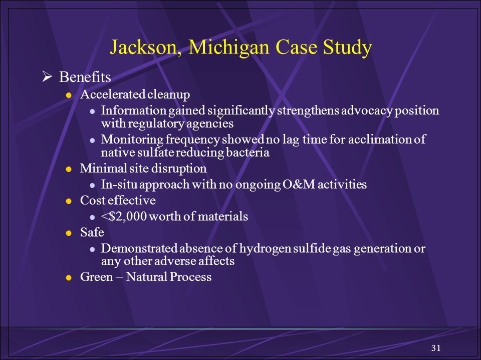 Jackson, Michigan Case Study