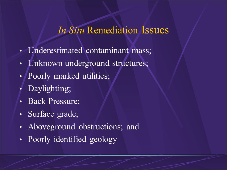 In Situ Remediation Issues