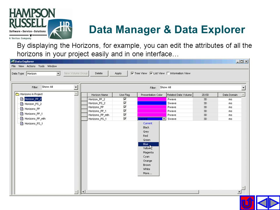 Data Manager & Data Explorer