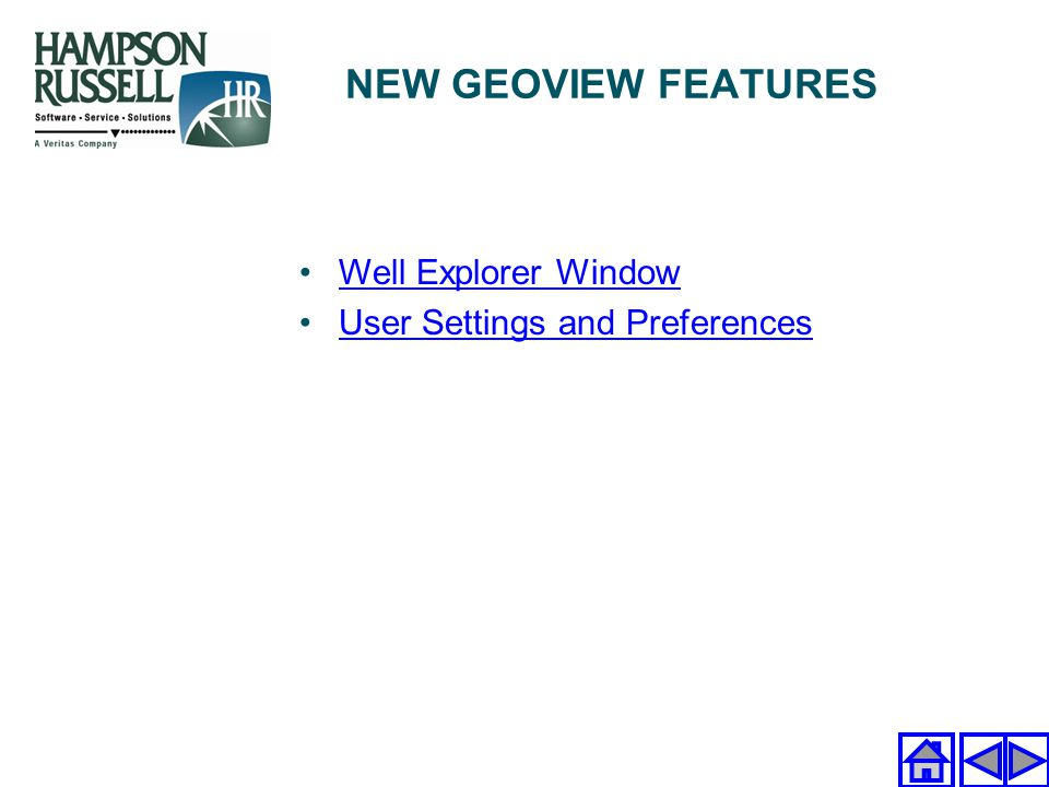 NEW GEOVIEW FEATURES Well Explorer Window