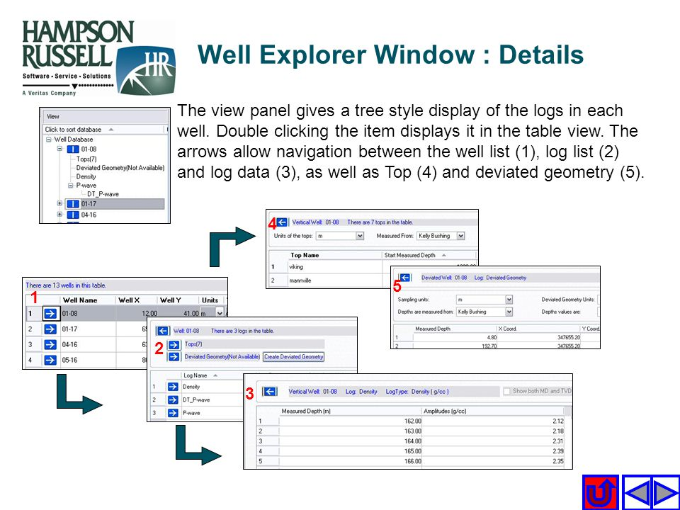 Well Explorer Window : Details