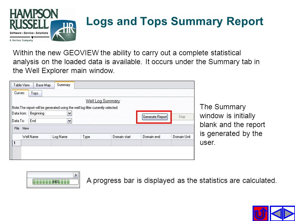Logs and Tops Summary Report