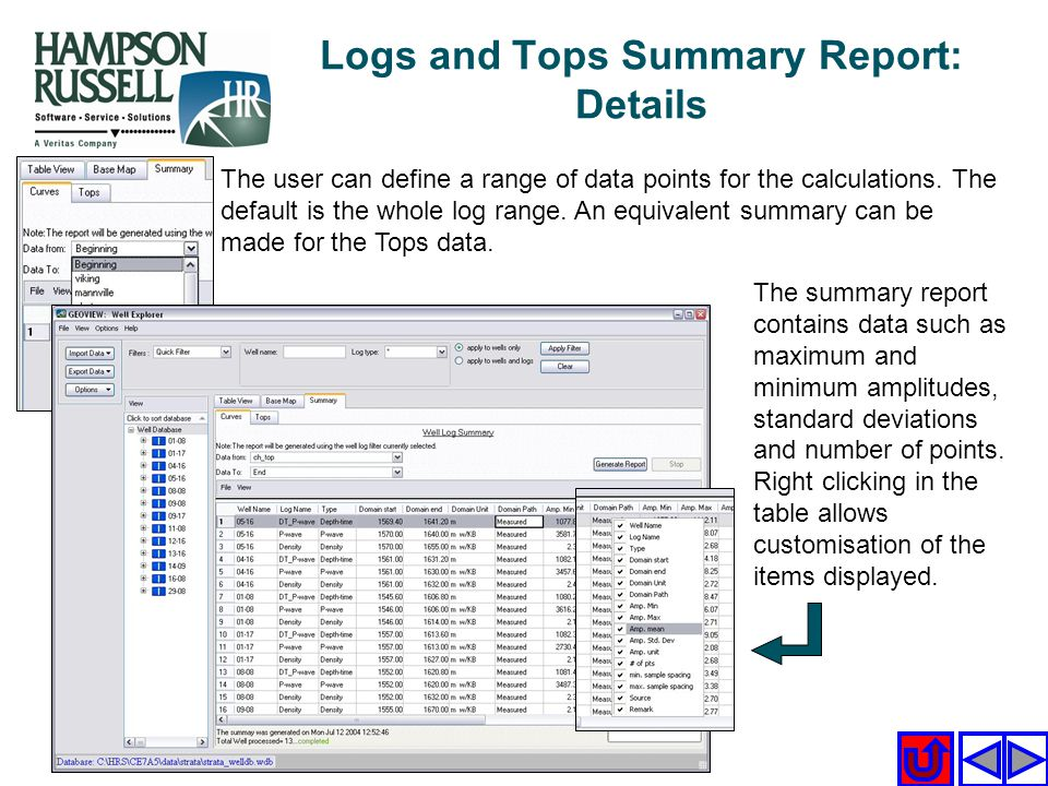 Logs and Tops Summary Report: Details