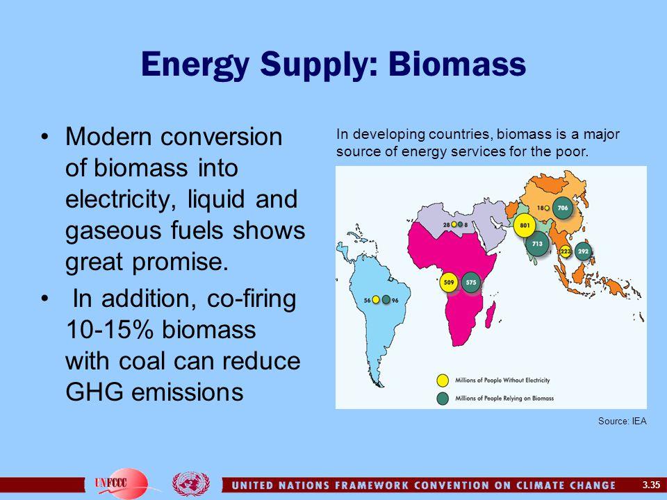 Energy Supply: Biomass