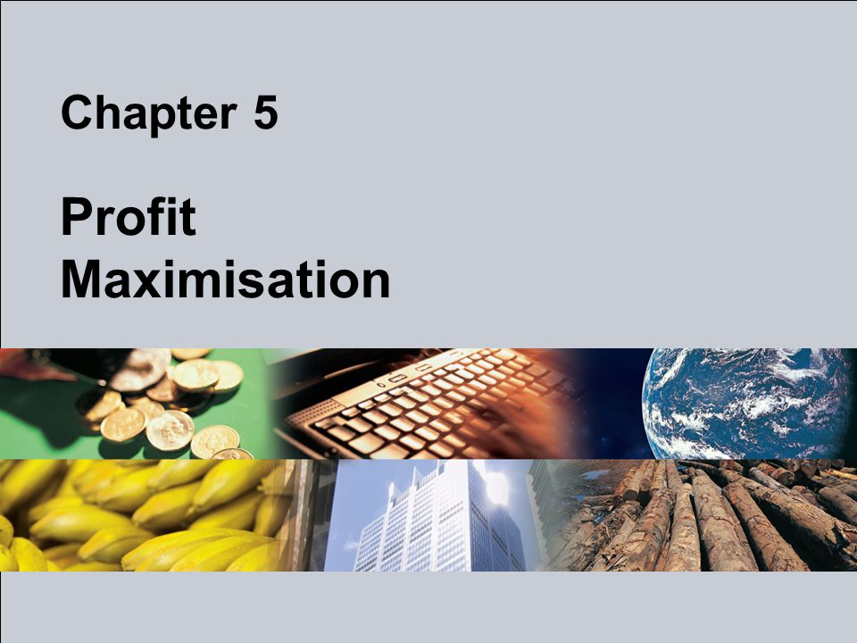 Chapter 5 Profit Maximisation
