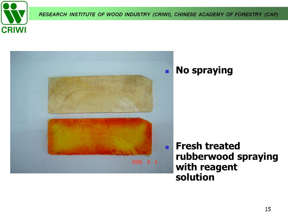 No spraying Fresh treated rubberwood spraying with reagent solution